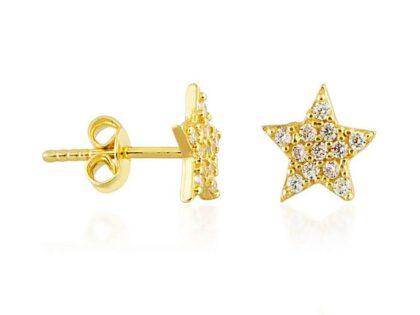 Yıldız Altın Çivi Küpe 14K Gold Taşlı